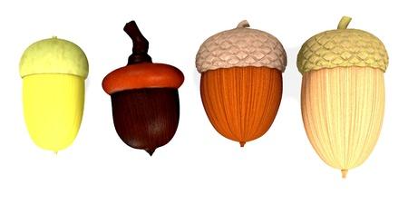 3d  render of acorn Stock Photo - 13745463