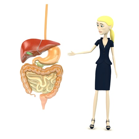 3d render of cartoon character with digestive system Stock Photo - 17911907