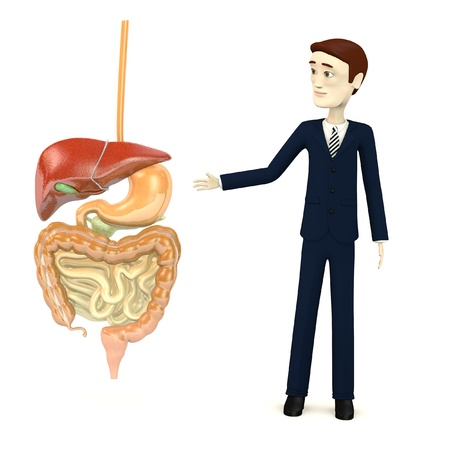 small intestine: 3d render of cartoon character with digestive system Stock Photo