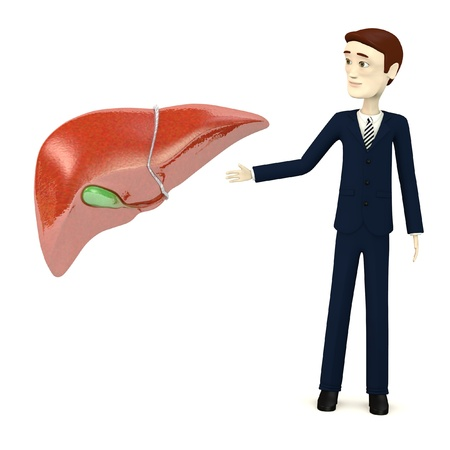 3d render of cartoon character with liver photo