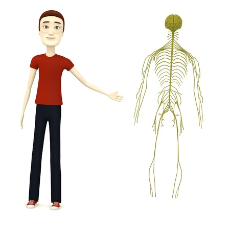 3d render of cartoon character with nervous system photo