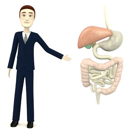 3d render of cartoon character with digestive system Stock Photo - 19365458