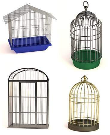 realistic 3d render of bird cages photo