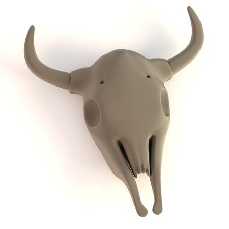 craneo de vaca: realistas 3D del cr�neo de la vaca