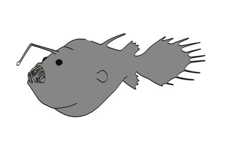 アンコウの漫画画像
