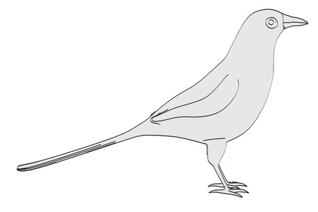 magpie: cartoon image of magpie bird