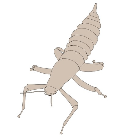 spectre: cartoon image of spectre insect