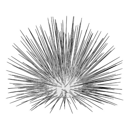 sea urchin: cartoon image of sea urchin
