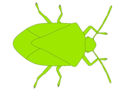 stink: cartoon image of stink bug