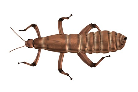 the spectre: realistic 3d render of spectre insect Stock Photo