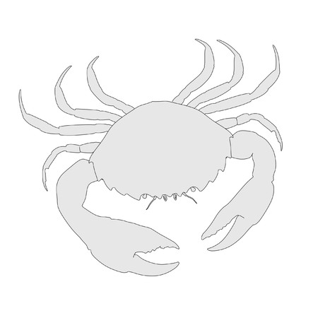 cartoon image of crustacean animal - crab