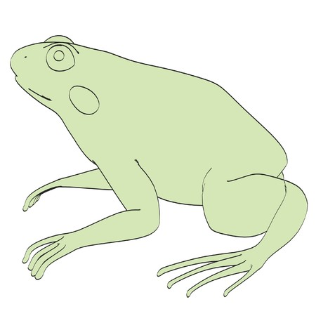 cartoon image of rana esculenta