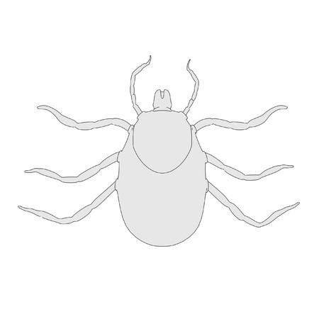 caricatura de larva de garrapata Foto de archivo - 24549243
