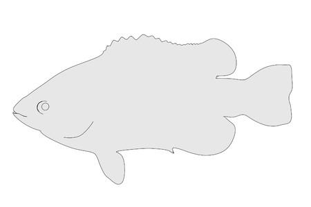 fish animal: cartoon illustration of fish animal Stock Photo