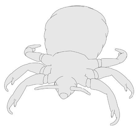 louse: cartoon image of louse parasite