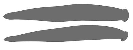 sanguisuga: Immagine cartone animato di sanguisuga gigante