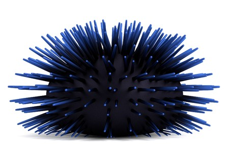 realistic 3d render of sea urchin Stock Photo