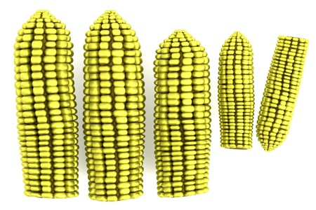 realistic 3d model of corns photo