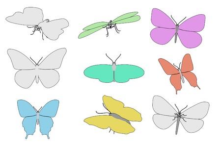 buttefly: cartoon image of buttefly animals