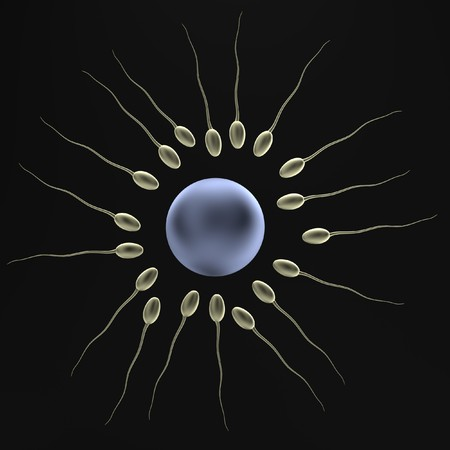 realistic 3d render of sperms photo