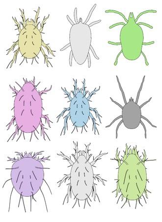 mite: cartoon image of mite animals Stock Photo