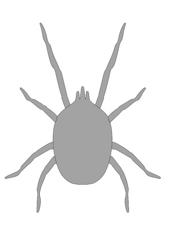 mite: cartoon image of mite animal Stock Photo