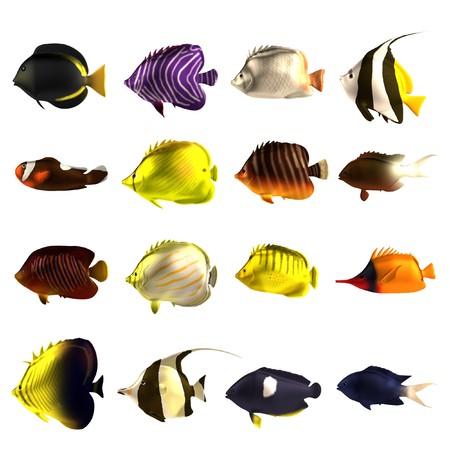 peces de acuario: render 3D realista de peces tropicales