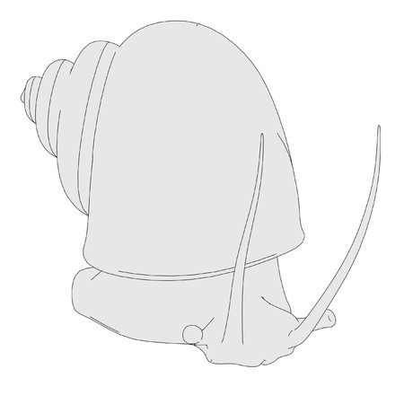 apple snail: cartoon image of apple snail
