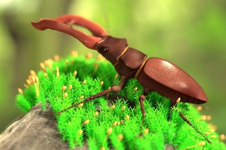 stag beetle: 3d render of lucanus cervus
