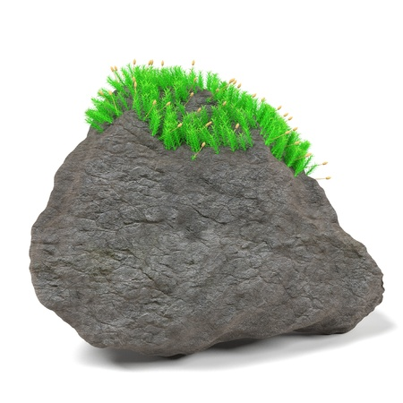 moss: 3d render of rock stone with moss Stock Photo