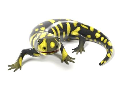 terrarium: 3d render of tiger salamander Stock Photo