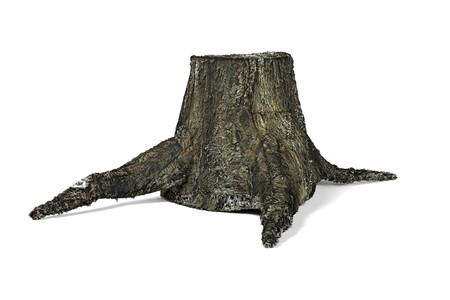 rotten: 3d render of old stump Stock Photo