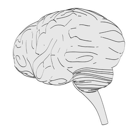 cns: 2d cartoon illustration of brain Stock Photo
