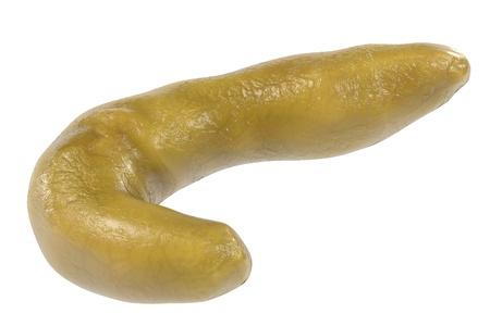 trzustka: 3d rendering ludzkiej trzustki