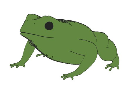 2d cartoon illustration of bufo bufo Stock Photo