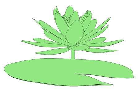 lilly pad: 2d cartoon illustration of water lily