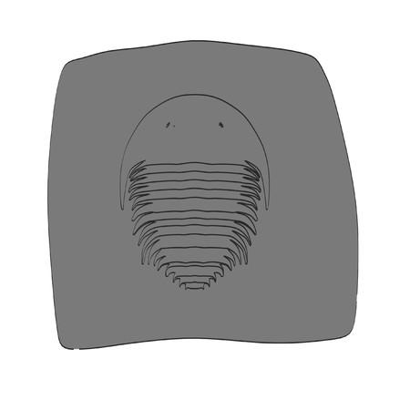 excavation: 2d cartoon illustration of trilobite Stock Photo