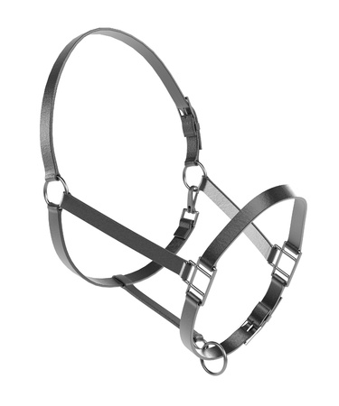 horse collar: realistic 3d render of halter