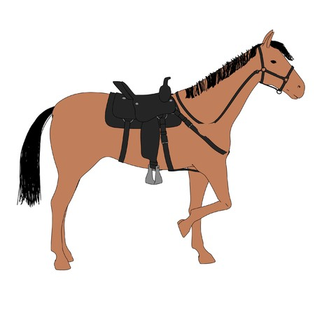 2d cartoon illustration of horse Stock Photo