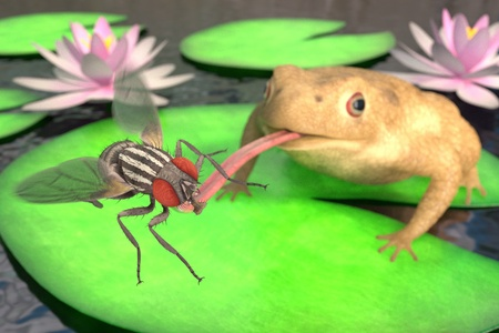 realistic 3d render of toad eating fly
