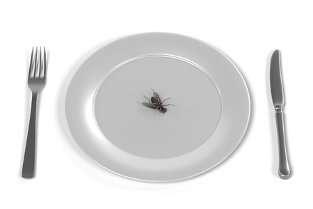 musca domestica: 3d render of fly on plate Stock Photo
