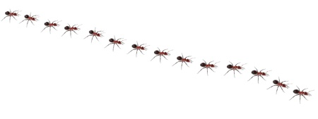 realistic 3d render of ants walking Stock Photo