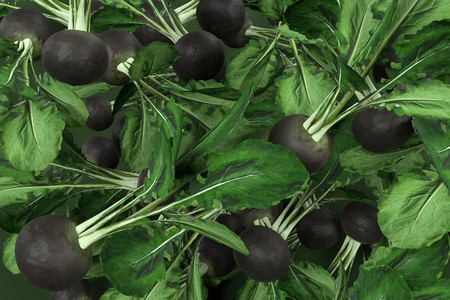 gallstones: realistic 3d render of black radish