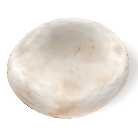 realistic 3d render of champignon Banque d'images