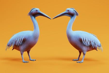 Realistic 3D Render of Pelicans 版權商用圖片