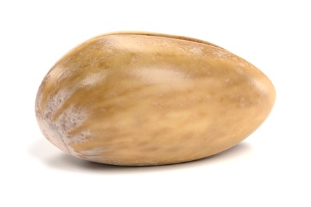 Realistic 3D Render of Pistachio Nut