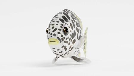 Realistic 3D Render of Andaman Sweetlips Fish