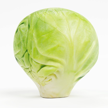 Realistic 3D Render of Brussels Sprouts 版權商用圖片