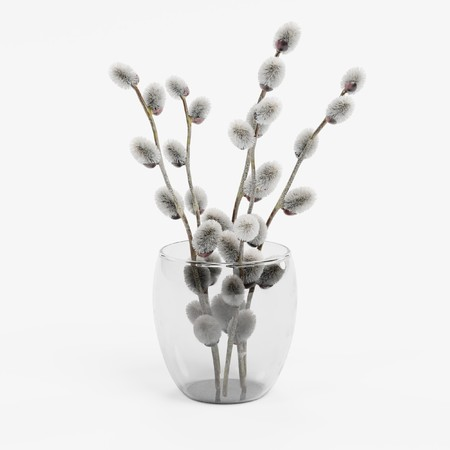 Realistic 3D Render of Catkings in Vase