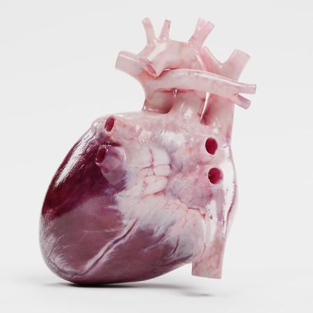 realista 3d de corazón humano